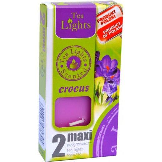 Admit Scented Maxilights podgrzewacze zapachowe typu maxi 59 mm ~ 10 h 2 szt - Crocus