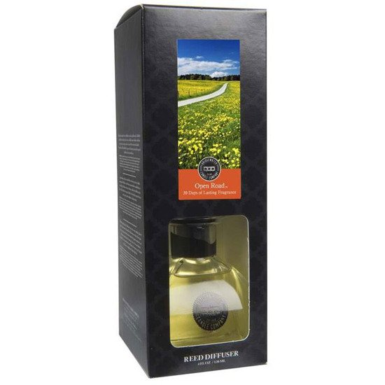 Bridgewater Candle Company Petite Reed Diffuser dyfuzor zapachowy 120 ml - Open Road